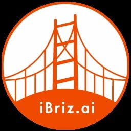 iBriz-Validator