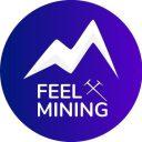 Feel Mining